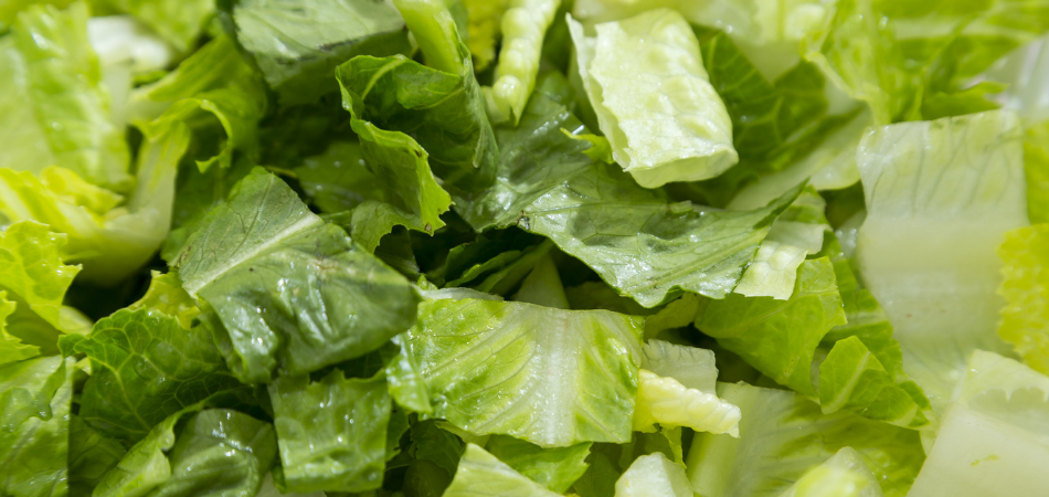 E. coli Infections Linked to Romaine Lettuce; Idaho Residents Impacted